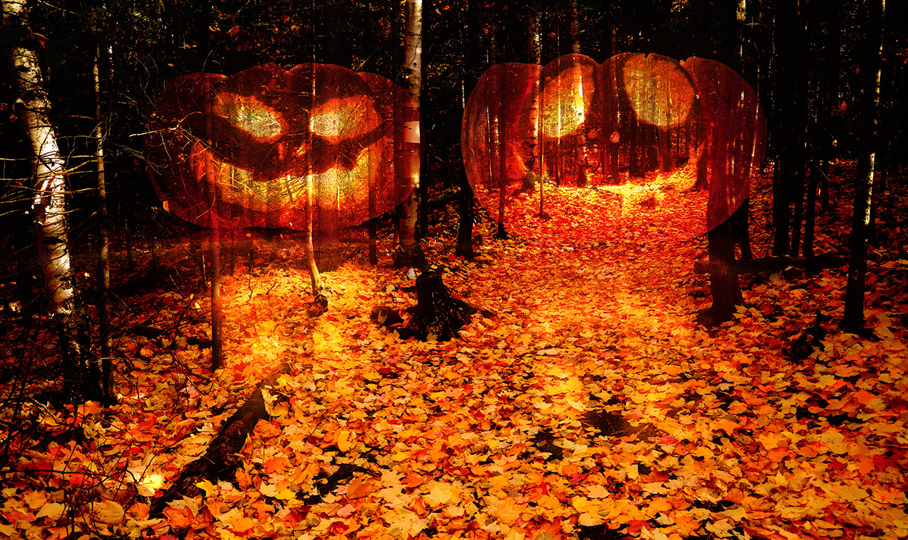 Halloween Scary Wood 2 - Colorful Stock Photos
