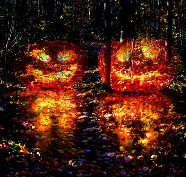 Halloween Scary Wood 3 - Colorful Stock Photos