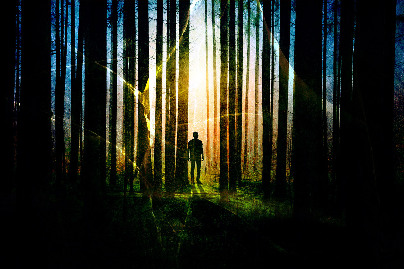 Surreal Apocalyptic Woods 01 - Colorful Stock Photos