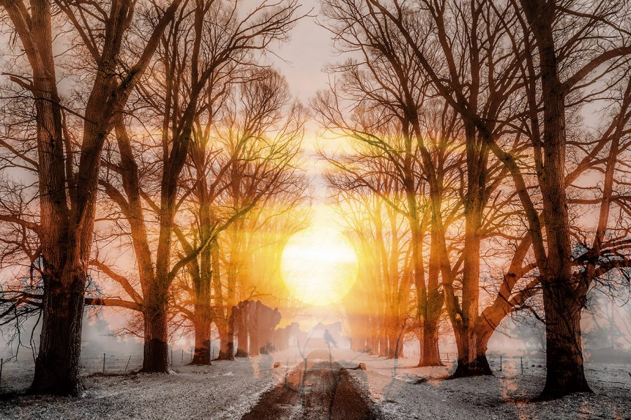 Wintery Road 01 - Colorful Stock Photos