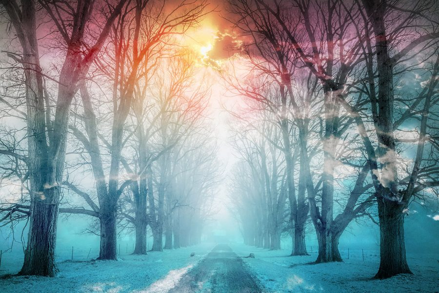 Wintery Road 02 - Colorful Stock Photos