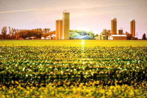 Modern-Farmland-and-Agriculture-Real-Estate