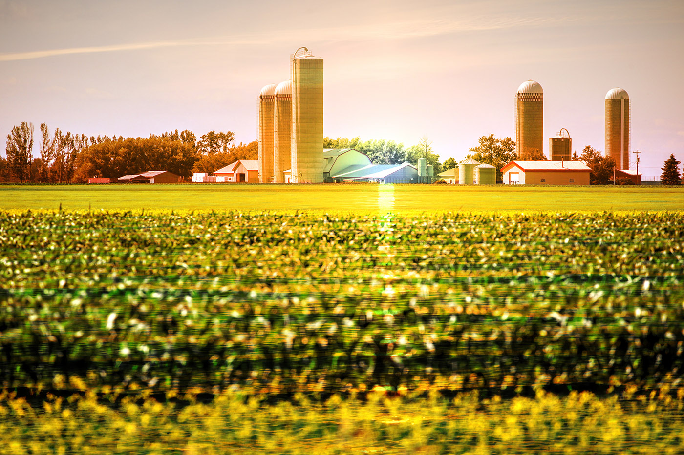 Modern Farmland and Agriculture Real Estate - Colorful Stock Photos